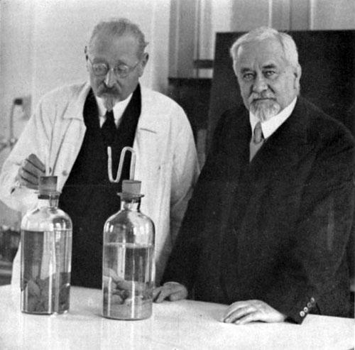 Камиль Герен и Альберт Кальметт