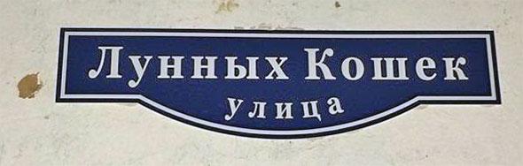 Улица Лунных Кошек